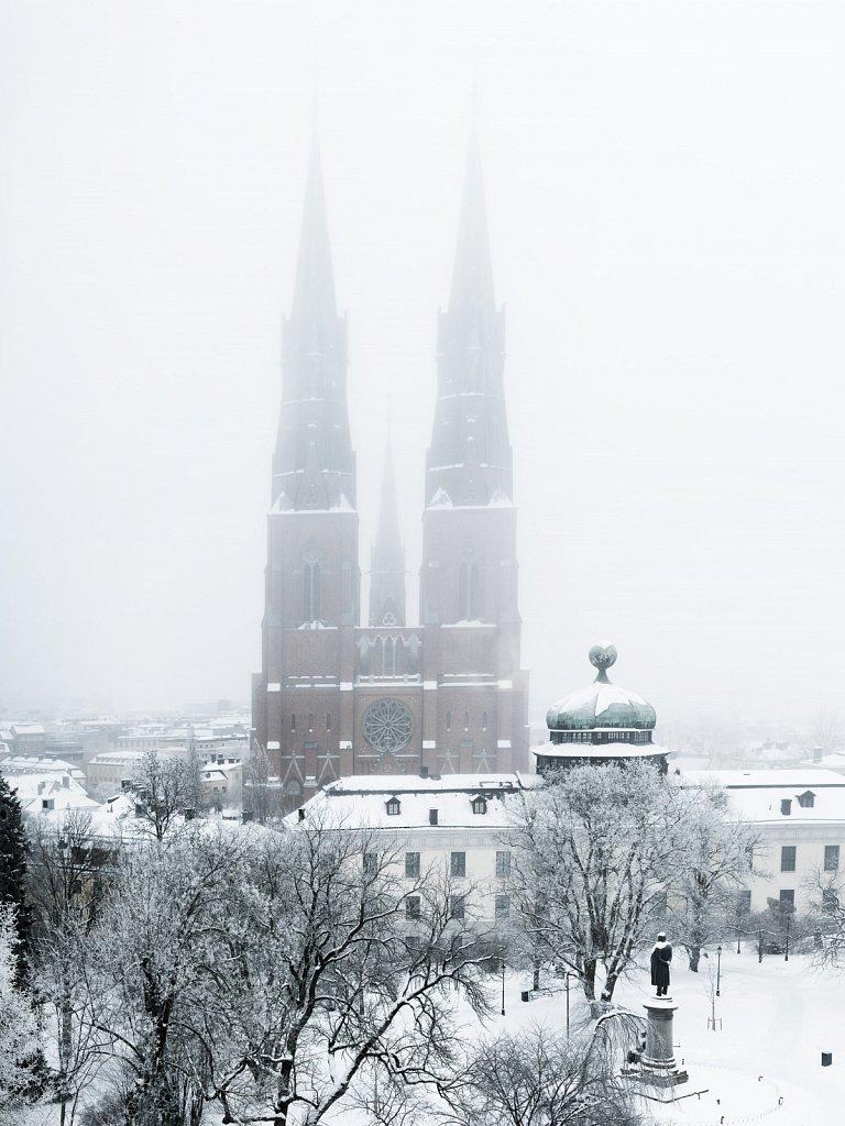 Uppsala domkyrka och Gustavianum