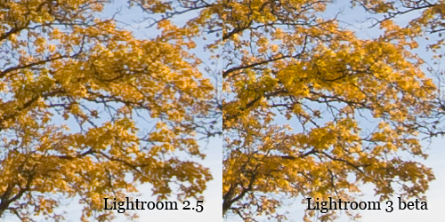 Comparison between Lightroom 2 and 3 beta.