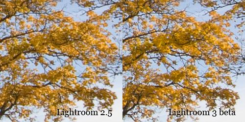 Comparison between Lightroom 2 and 3 beta.