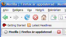 Screenshot of the original theme of Firefox 2.