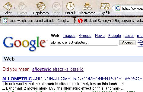 Google mistake