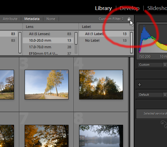 In Lightroom 3 beta you can lock filters with the padlock icon.