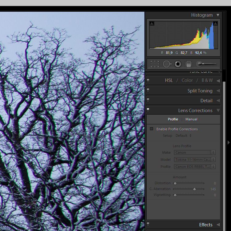 100% crop of image taken with Tokina 11-16mm, before and after correction of chromatic aberration with Lightroom.